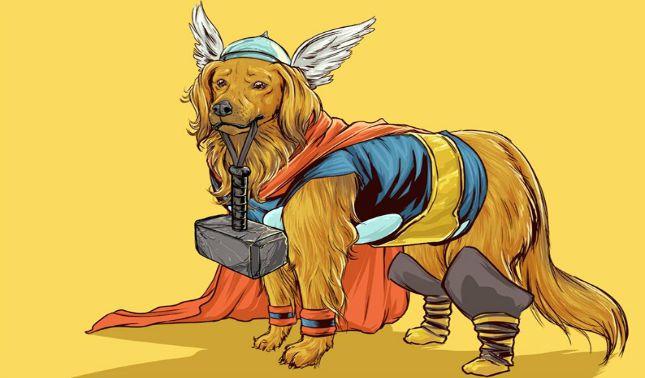Pets heróis