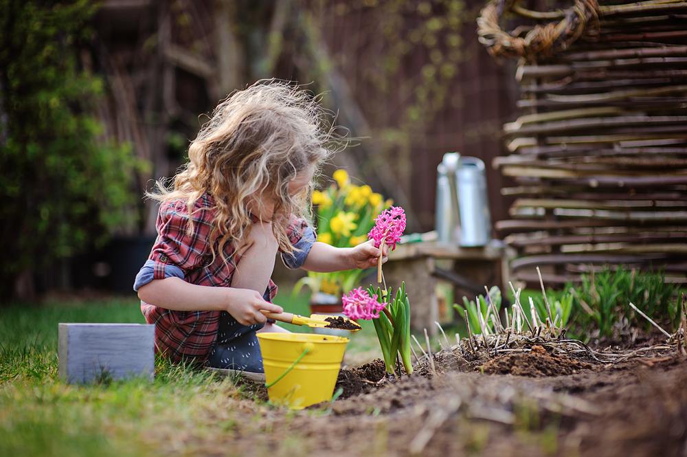 jardinagem