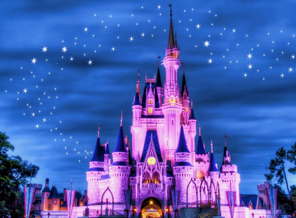 disney-world-magic-kingdom-castle-at-night-magic-kingdom-castle-night-1024x756