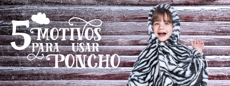 Cabecalho_poncho_