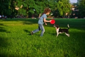 Como escolher o cachorro ideal para as crianças